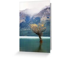 The Lone Willow - Glenorchy New Zealand Greeting Card