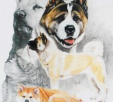 Akita/Ghost by BarbBarcikKeith