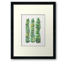Seaweed Framed Print