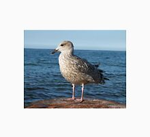 Seagull on a rock T-Shirt
