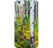 Aspens in Vibrant Greens iPhone Case/Skin