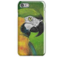 green and gold parrot macaw original oil pastel painting iPhone Case/Skin