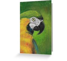 green and gold parrot macaw original oil pastel painting Greeting Card