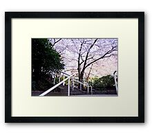 Stairway to the Pink Sky Framed Print