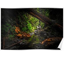 Glass River Waterfall Poster