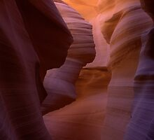 Sandstone Beauty - Antelope Canyon by Candy Gemmill