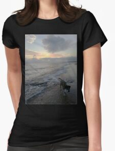 5AM Waves - Dog & The Deep Blue Sea Womens Fitted T-Shirt