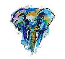 Elephant Blot Doodle Photographic Print