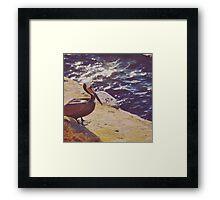 Pelican Point Framed Print
