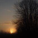 Foggy Sunrise by Allen Lucas