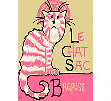 Le Chat Sac Photographic Print