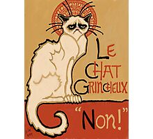 Le Chat Grincheux Photographic Print