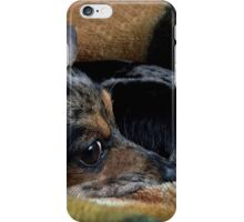 The Snuggle Puppy iPhone Case/Skin