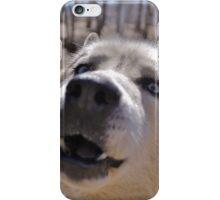 "Siberian Husky Says ""HI"" iPhone Case/Skin"