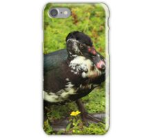 Black and White Ducks in Plants iPhone Case/Skin
