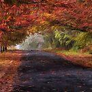 Autumn Splendour- The HDR Experience by Philip Johnson