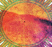 Le Sol Sticker