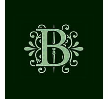 Alphabet Letters - B - green background    Photographic Print