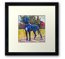 Great Dane Dog Picture, Party Girl Framed Print