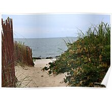 Fence Beside the Beach Path Poster