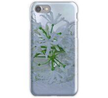 Nerines iPhone Case/Skin