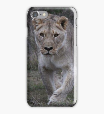 Lion Stalking iPhone Case/Skin