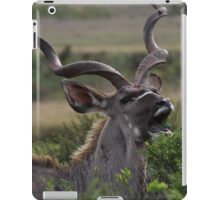 Kudu Grazing in South Africa iPad Case/Skin