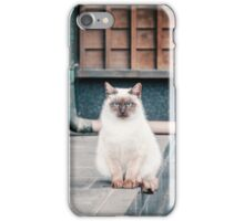 Cat, Adso, Temple iPhone Case/Skin