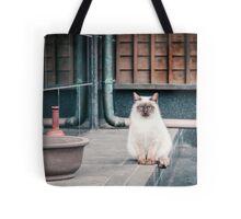 Cat, Aso, Temple Tote Bag