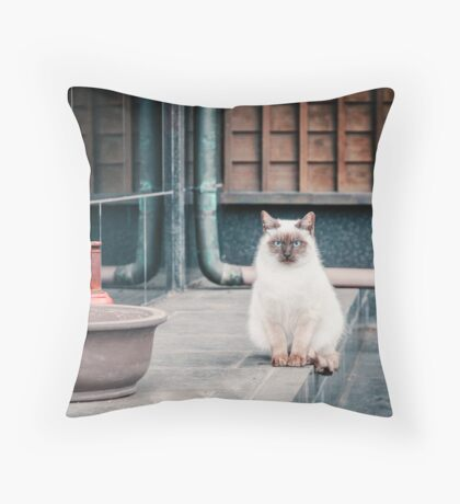 Cat, Aso, Temple Throw Pillow