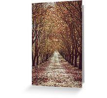 Tall tree strolling. Greeting Card
