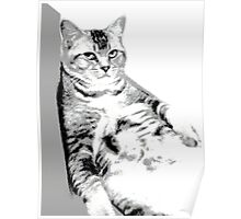 Lying Cat, Color Halftone Poster