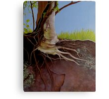 Holly Roots Canvas Print