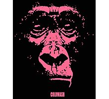 PINK MONKEY Photographic Print