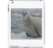 Silly seal iPad Case/Skin