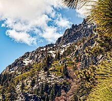 Sierra Nevada by Mike Pesseackey (crimsontideguy)