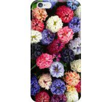 Hyacinths at Keukenhof iPhone Case/Skin