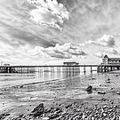 Penarth Pier Morning Light 2 Mono by Steve Purnell