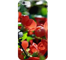 Full Bloom Of Love iPhone Case/Skin