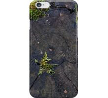Ancient Nature iPhone Case/Skin
