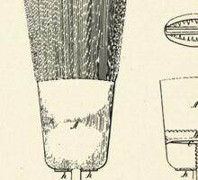 Broom Head-1864 Sticker