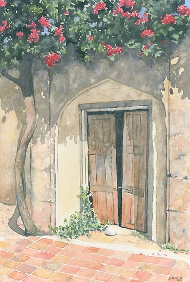 Old Doorway with Bougainvillea by ian osborne