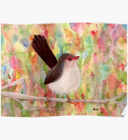Sweet Bird Poster