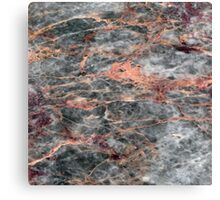 Marble salome Canvas Print