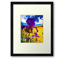 Psychedelic Iris Framed Print