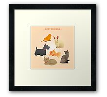 Home Pets Set: Carrot, Dog, Rabbit, Fish and Cats. Vector illustration Framed Print