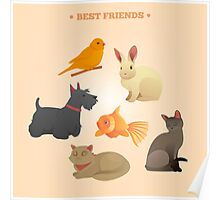 Home Pets Set: Carrot, Dog, Rabbit, Fish and Cats. Vector illustration Poster