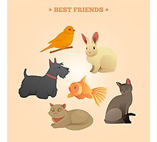 Home Pets Set: Carrot, Dog, Rabbit, Fish and Cats. Vector illustration Photographic Print