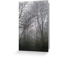 Heaton Park Tree Fog Greeting Card