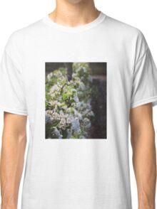 Apple blossom Classic T-Shirt